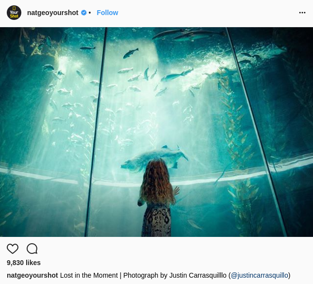 microsoft and national geographic social media campaign